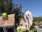 french st martin carnival grand parade photos judith roumou 342