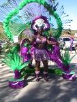 french st martin carnival grand parade photos judith roumou 379
